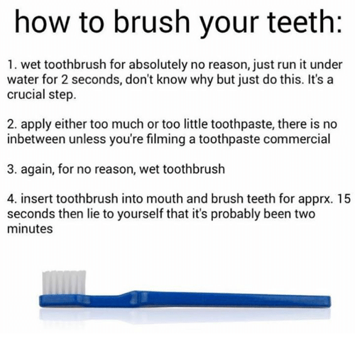 how to brush your teeth 1 wet toothbrush for absolutely 10613845 ✅ 25 best memes about how to brush your teeth how to brush