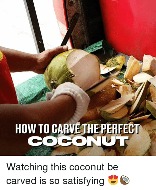 Dank, How To, and 🤖: HOW TO CARVE THEPERFEC  COCONUT Watching this coconut be carved is so satisfying 😍🥥