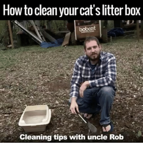 how to clean your litterbox rob
