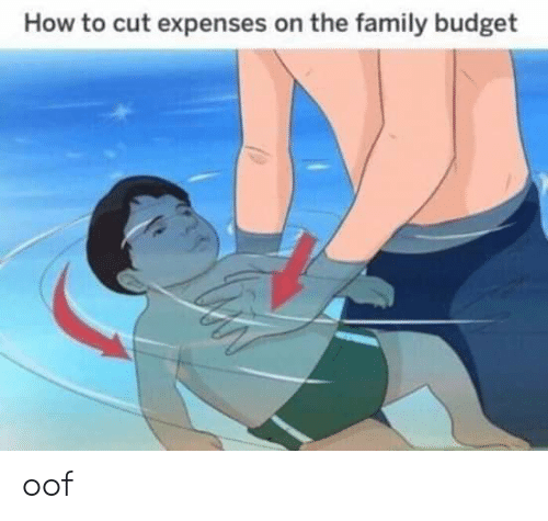 Family, Budget, and How To: How to cut expenses on the family budget oof
