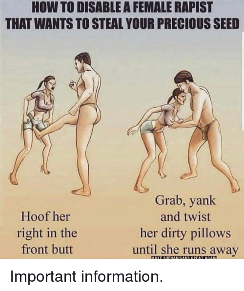 Butt, Memes, and Precious: HOW TO DISABLE A FEMALE RAPIST  THAT WANTS TO STEAL YOUR PRECIOUS SEED  Hoof her  right in the  front butt  Grab, yank  and twist  her dirty pillows  until she runs away  MAKE SHENANIGANS GREAT AGAIN Important information.