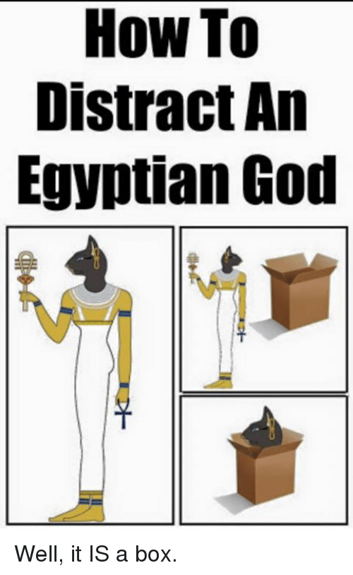 Memes, Egyptian, and 🤖: How To  Distract An  Egyptian God Well, it IS a box.