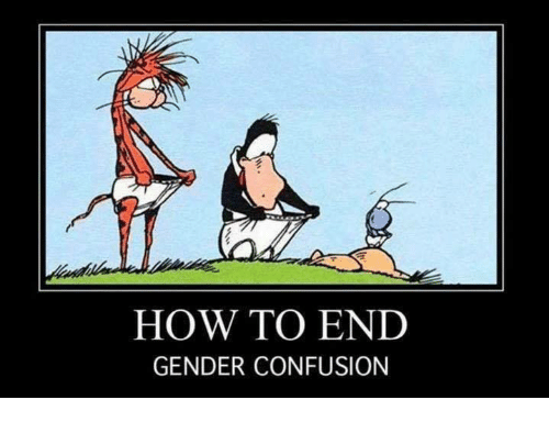 Image result for how to end gender confusion