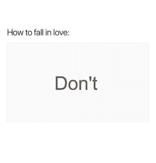 How To Fall In Love Dont Fall Meme On Meme
