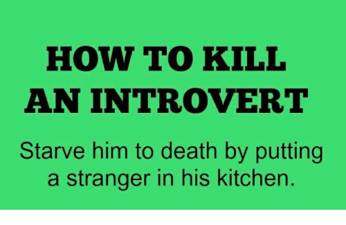 Signs An Introvert Likes You Reddit