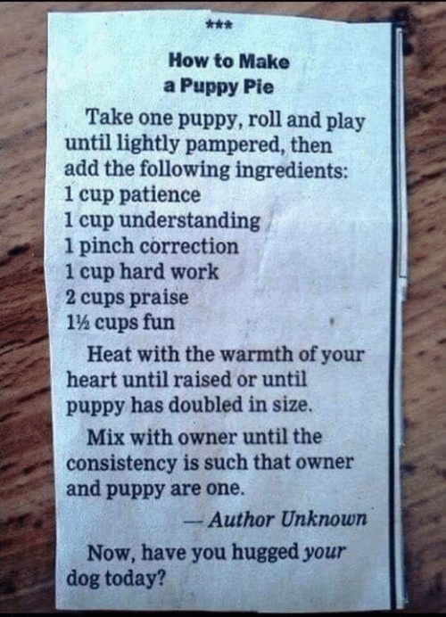 Memes, Work, and Heart: How to Make  a Puppy Pie  Take one puppy, roll and play  until lightly pampered, then  add the following ingredients:  1 cup patience  1 cup understanding  1 pinch correction  1 cup hard work  2 cups praise  1% cups fun  Heat with the warmth of your  heart until raised or until  puppy has doubled in size.  Mix with owner until the  consistency is such that owner  and puppy are one.  Author Unknown  Now, have you hugged your  dog today?