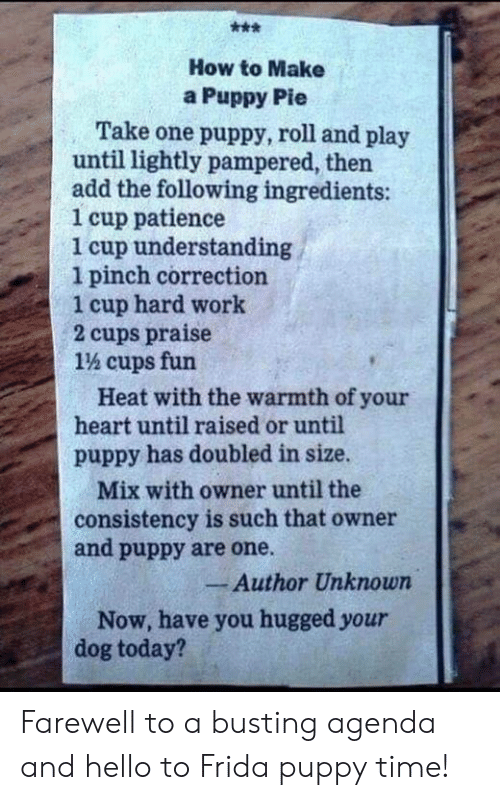 Hello, Memes, and Work: How to Make  a Puppy Pie  Take one puppy, roll and play  until lightly pampered, then  add the following ingredients:  1 cup patience  1 cup understanding  1 pinch correction  1 cup hard work  2 cups praise  1% cups fun  Heat with the warmth of your  heart until raised or until  puppy has doubled in size.  Mix with owner until the  consistency is such that owner  and puppy are one.  Author Unknown  Now, have you hugged your  dog today? Farewell to a busting agenda and hello to Frida puppy time!
