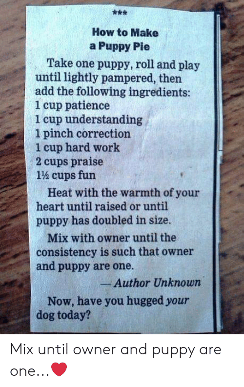 Memes, Work, and Heart: How to Make  a Puppy Pie  Take one puppy, roll and play  until lightly pampered, then  add the following ingredients:  1 cup patience  1 cup understanding  1 pinch correction  1 cup hard work  2 cups praise  1% cups fun  Heat with the warmth of your  heart until raised or until  puppy has doubled in size.  Mix with owner until the  consistency is such that owner  and puppy are one.  Author Unknown  Now, have you hugged your  dog today? Mix until owner and puppy are one...❤