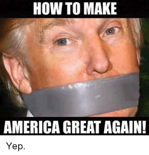 America, Memes, and How To: HOW TO MAKE  AMERICA GREAT AGAIN! Yep.