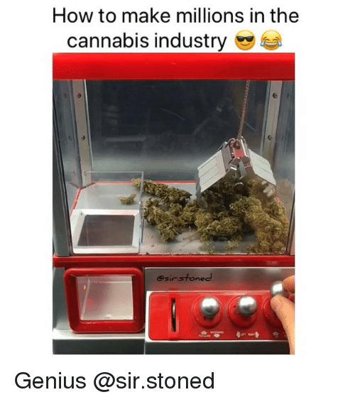 Weed, Genius, and How To: How to make millions in the  cannabis industry  esirsfoned Genius @sir.stoned