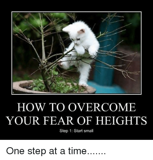 how to overcome your fear of heights step 1 start 26180327 ✅ 25 best memes about fear of heights fear of heights memes