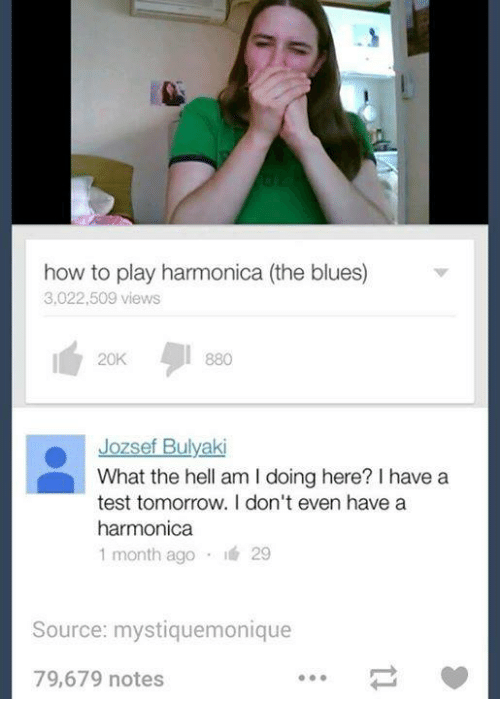 how to play the harmonica a