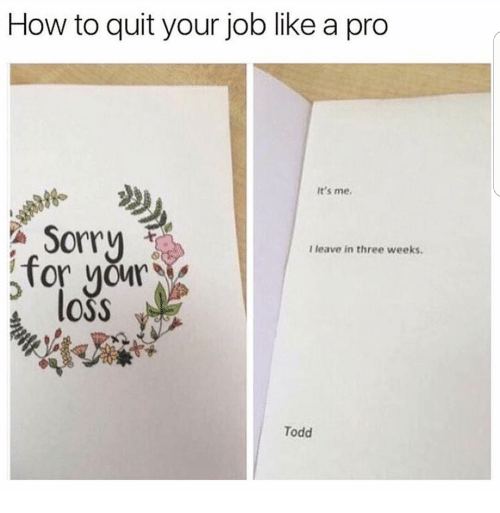 how to quit your job like a pro it u0026 39 s me 98 sorry i leave