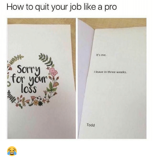 Memes, Sorry, and How To: How to quit your job like a pro  It's me.  Sorry  on  I leave in three weeks  loss  Todd 😂
