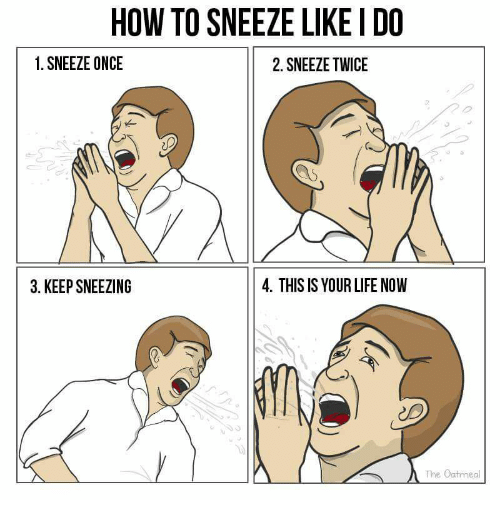 HOW TO SNEEZE LIKE I DO 1 SNEEZE ONCE 2 SNEEZE TWICE 3 KEEP