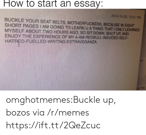 Memes, Shut Up, and Tumblr: How to start an essay:  2014-10-30, 12:41 PM  BUCKLE YOUR SEAT BELTS, MOTHERFUCKERS, BECAUSE IN EIGHT  SHORT PAGES I AM GOING TO LEARN U A THING THAT IONLY LEARNED  MYSELF ABOUT TWO HOURS AGO, SO SIT DOWN, SHUT UP, AND  ENJOY THE EXPERIENCE OF MY 4-AM-REDBULL-INDUCED-SELF  HATRED-FUELLED-WRITING-EXTRAVEGANZA. omghotmemes:Buckle up, bozos via /r/memes https://ift.tt/2QeZcuc