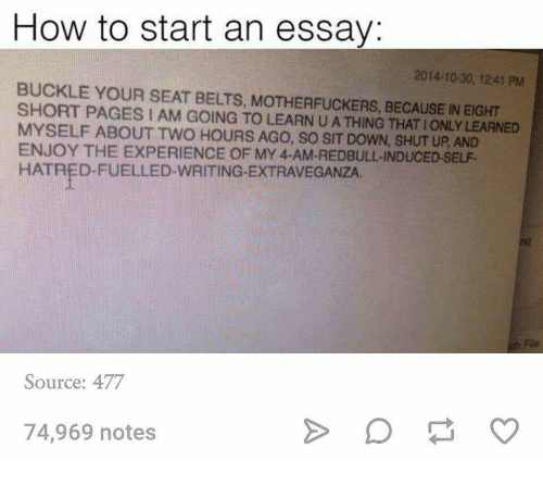 how to start an essay buckle your seat belts because  shut up buckle and how to how to start an essay 2014