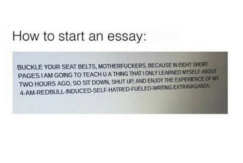 how to start an essay buckle your seat belts motherfuckers because  shut up buckle and how to how to start an essay buckle