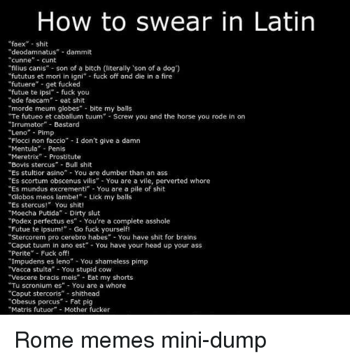 "Ass, Bitch, and Brains: How to swear in Latin  ""faex shit  ""deodamnatus"" dammit  cunne- cunt  filius canis"" son of a bitch (literally son of a dog')  fututus et mori in igni fuck off and die in a fire  futuere"" get fucked  ""futue te ipsi"" fück you  ""ede faecam eat shit  ""morde meum globes bite my balls  Te futueo et caballum tuum Screw you and the horse you rode in on  ""Irrumator Bastard  Leno"" Pimp  Flocci non faccio"" I don't give a damn  ""Mentula Penis  ""Meretrix Prostitute  Bovis stercus"" Bull shit  Es stultior asino - You are dumber than an ass  Es scortum obscenus vilis You are a vile, perverted whore  ""Es mundus excrementi"" You are a pile of shit  Globos meos lambe!"" Lick my balls  ""Es stercus! You shit!  Moecha Putida Dirty slut  ""Podex perfectus es"" You're a complete asshole  Futue te ipsum! Go fuck yourself!  Stercorem pro cerebro habes"" You have shit for brains  ""Caput tuum in ano est"" You have your head up your ass  ""Perite"" Fuck off!  ""Impudens es leno You shameless pimp  ""Vacca stulta"" You stupid cow  ""Vescere bracis meis Eat my shorts  ""Tu scronium es"" You are a whore  ""Caput stercoris"" shithead  Obesus porcus"" Fat pig  Matris futuor"" Mother fucker Rome memes mini-dump"