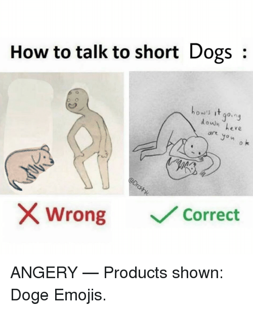 Dank, Doge, and Dogs: How to talk to short Dogs:  ow's it go.ng  doun eve  ere  art  Jon  o k  uo  wrong  ﹀/ Correct ANGERY   — Products shown: Doge Emojis.