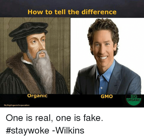 Fake, Memes, and How To: How to tell the difference  Organic  GMO  fb/BigorganicCorporation  BIG  ORGANIC One is real, one is fake. #staywoke  -Wilkins