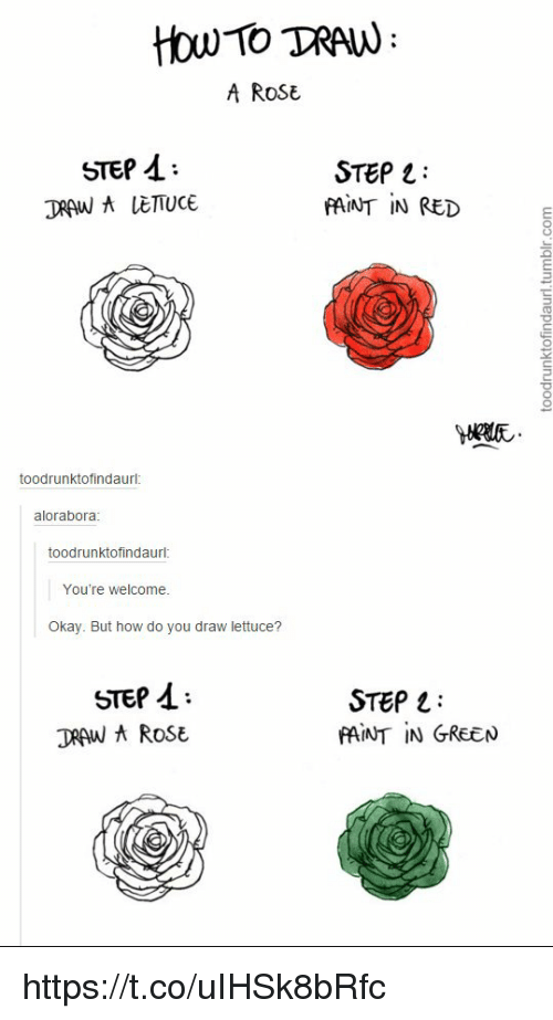 how to tran a rose step step draw a lettuce paint in red
