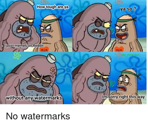 how tough areya ya so l post memes on 24465402 ✅ 25 best memes about spongebob and reddit spongebob and,Memes Reddit