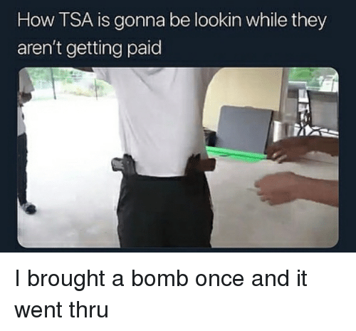 Dank Memes, How, and Tsa: How TSA is gonna be lookin while they  aren't getting paid I brought a bomb once and it went thru