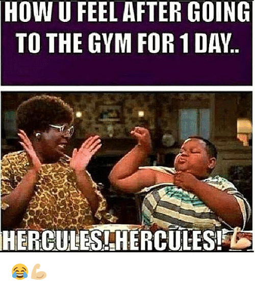 Gym, How, and Hercules: HOW  U FEEL AFTER GOING  TO THE GYM FOR 1 DAY.  HERCULES -HERCULES! 😂💪🏼