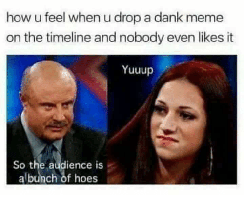 Dank, Meme, and Humans of Tumblr: how u feel when u drop a dank meme  on the timeline and nobody even likes it  Yuuup  So the audience is  albunch of hoes