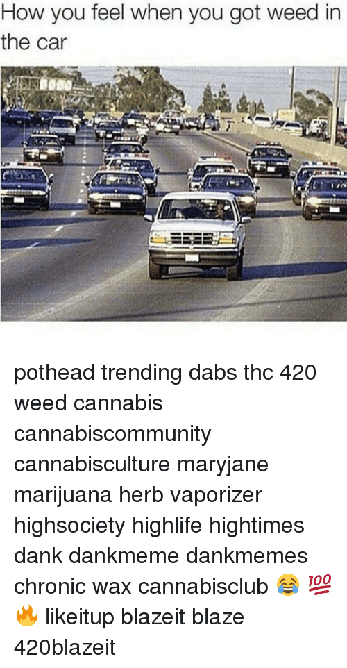 How You Feel When You Got Weed In The Car Pothead Trending Dabs Thc