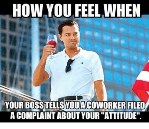 HOW YOU FEEL WHEN YOUR BOSSTELLSLOUACOWORKER FILED a