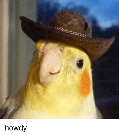 howdy-36326473.png