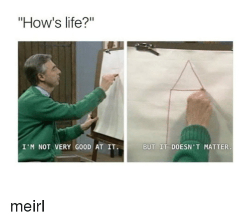 "Life, Good, and MeIRL: ""How's life?""  I'M NOT VERY GOOD AT IT.  BUT IT DOESN'T MATTER. meirl"