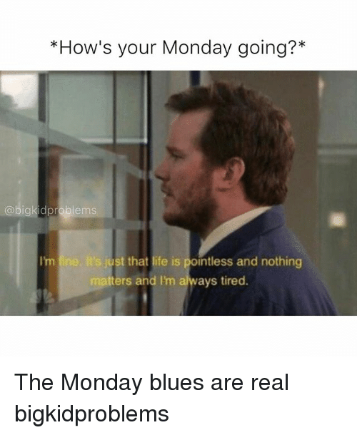 hows your monday going igkid problems s just that life 20244249 ✅ 25 best memes about monday blues monday blues memes