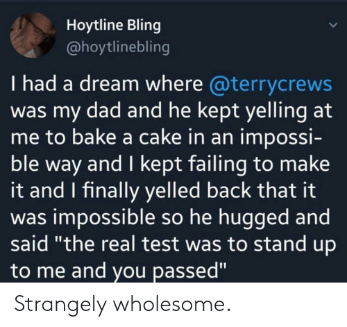 "A Dream, Bling, and Dad: Hoytline Bling  @hoytlinebling  I had a dream where @terrycrews  was my dad and he kept yelling at  me to bake a cake in an impossi-  ble way and I kept failing to make  it and I finally yelled back that it  was impossible so he hugged and  said ""the real test was to stand up  to me and you passed"" Strangely wholesome."