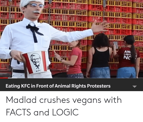 Facts, Kfc, and Logic: Hr  ANI  NC  Eating KFC in Front of Animal Rights Protesters Madlad crushes vegans with FACTS and LOGIC