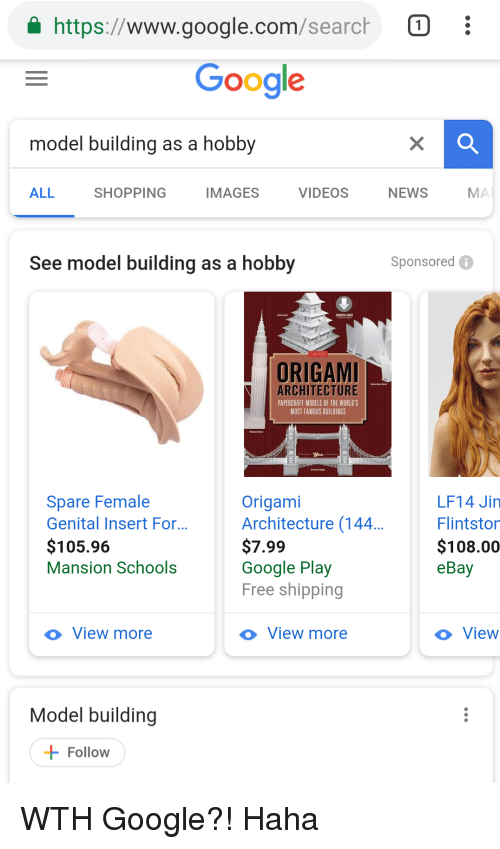 Image of: Auctions Ebay Funny And Google Httpswwwgooglecom Meme Httpswwwgooglecomsearct Google Model Building As Hobby All