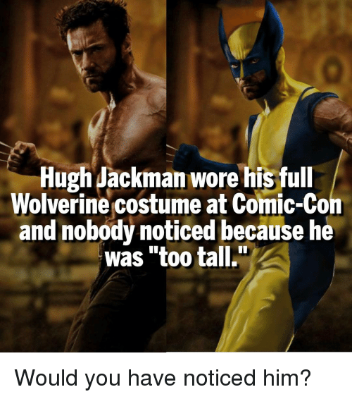 Memes Wolverine and Hugh Jackman Hugh Jackman wore his full Wolverine costume at  sc 1 st  Me.me & Hugh Jackman Wore His Full Wolverine Costume at Comic-Con and Nobody ...