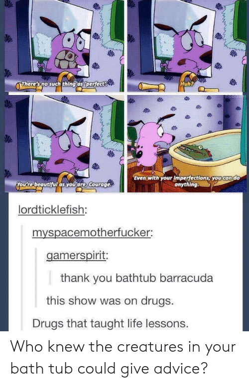 Advice, Drugs, and Huh: Huh?  ven thyousyou condo  ute beauthul as you are, Courage  anything  lordticklefish:  myspacemotherfucker:  thank you bathtub barracuda  this show was on drugs.  Drugs that taught life lessons. Who knew the creatures in your bath tub could give advice?