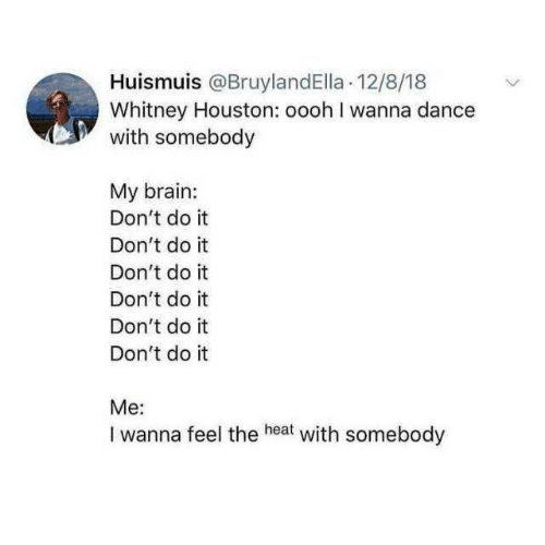 Whitney Houston, Brain, and Heat: Huismuis @BruylandElla .12/8/18  Whitney Houston: oooh I wanna dance  with somebody  My brain:  Don't do it  Don't do it  Don't do it  Don't do it  Don't do it  Don't do it  Me:  I wanna  feel the heat with somebody