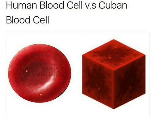 Cuban, Blood, and Human: Human Blood Cell v.s Cuban  Blood Cell