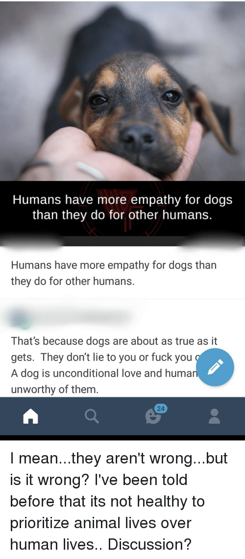 Where do humans fuck dogs at