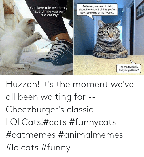 Cats, Funny, and Waiting...: Huzzah! It's the moment we've all been waiting for -- Cheezburger's classic LOLCats!#cats #funnycats #catmemes #animalmemes #lolcats #funny
