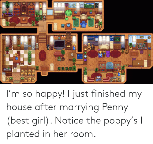 My House, Best, and Girl: I'm so happy! I just finished my house after marrying Penny (best girl). Notice the poppy's I planted in her room.