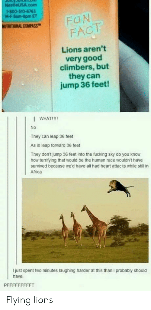 Fucking, Good, and Heart: I-800-510-6763  M-F 8am-8pm ET  FACTT  Lions aren't  very good  climbers, but  they can  jump 36 feet!  I WHAT!!  No  They can leap 36 feet  As in leap forward 36 feet  They don't jump 36 feet into the fucking sky do you know  how terrifying that would be the human race wouldnt have  survived because we'd have all had heart attacks while still in  Atrica  I just spent two minutes laughing harder at this than I probably should  have Flying lions