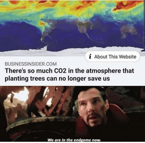 Trees, Website, and Atmosphere: i About This Website  BUSINESSINSIDER.COM  There's so much CO2 in the atmosphere that  planting trees can no longer save us  We are in the endgame now.