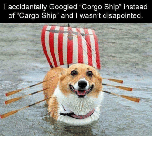 """Memes, 🤖, and Ship: I accidentally Googled """"Corgo Ship"""" instead  of """"Cargo Ship"""" and I wasn't disapointed  13  13"""