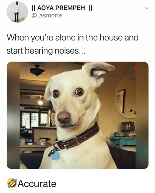 Being Alone, Memes, and House: I AGYA PREMPEH II  @_asmorie  When you're alone in the house and  start hearing noises... 🤣Accurate