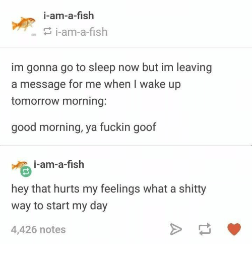 Go to Sleep, Good Morning, and Fish: i-am-a-fish  i-am-a-fish  im gonna go to sleep now but im leaving  message for mt when I wake up  tomorrow morning:  good morning, ya fuckin goof  i-am-a-fish  hey that hurts my feelings what a shitty  way to start my day  4,426 notes